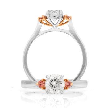 Ring EDJR023